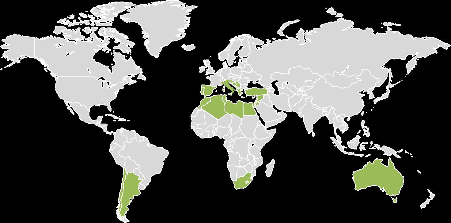 la nuova geografia dell'olio